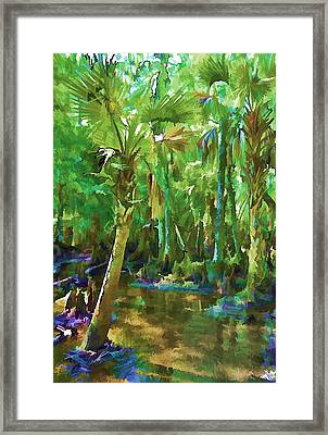 Florida Palms Framed Print