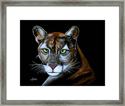 Florida Panther Jeremiah Framed Print by Adele Moscaritolo
