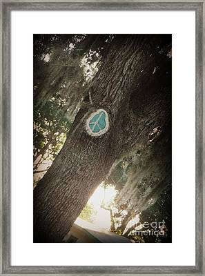 Framed Print featuring the photograph Florida Peace by Valerie Reeves