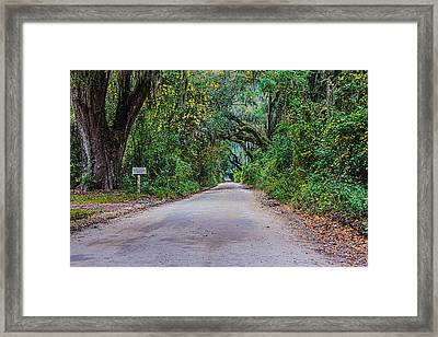 Florida Road Framed Print