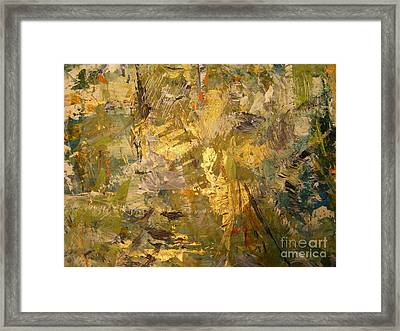 Florida Shine Framed Print