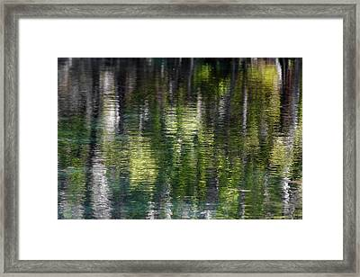 Florida Silver Springs River Framed Print