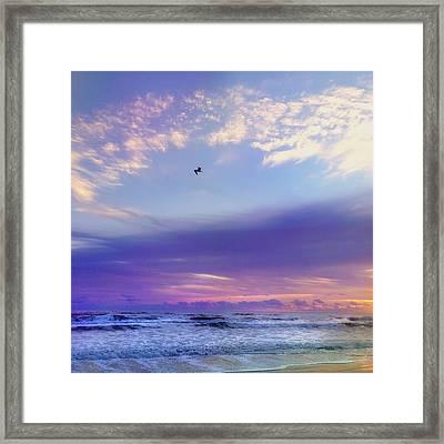 Florida Sunrise - New Smyrna Beach Framed Print by Joann Vitali