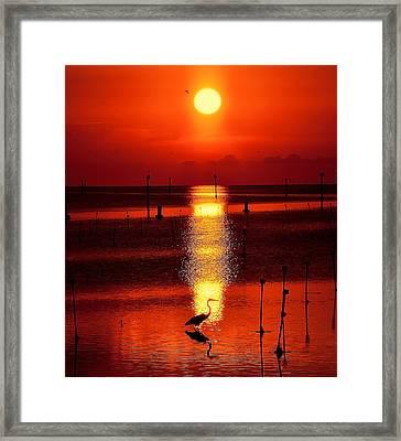 Florida Sunset Framed Print by Stuart Harrison