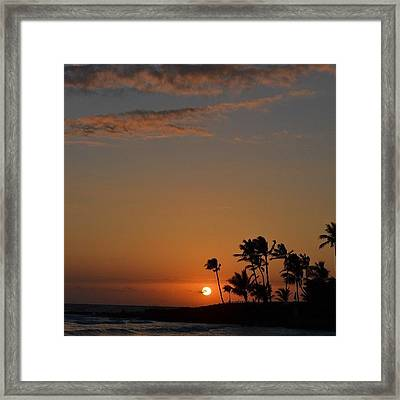 Florida Sunsets Framed Print