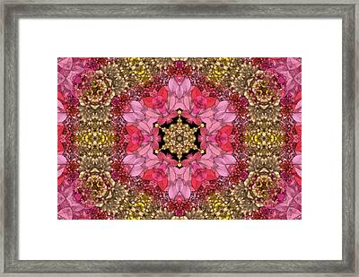 Florissimo Mandakal S01-01b Framed Print by Variance Collections