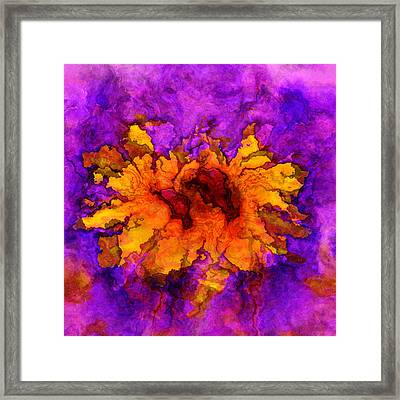 Floro - 45b Framed Print by Variance Collections