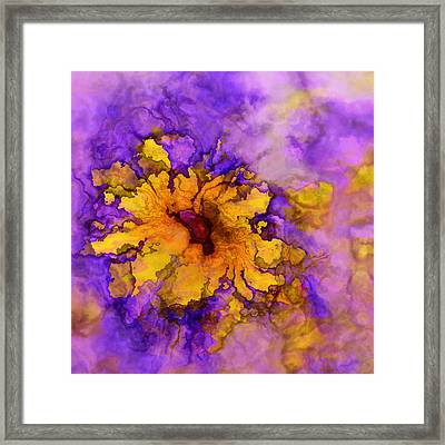 Floro - 50b Framed Print by Variance Collections