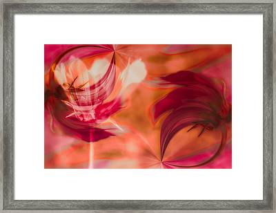 Framed Print featuring the photograph Flow by Jacqui Boonstra