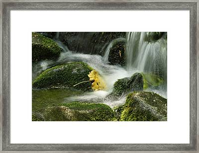 Flow Framed Print by Kimberly Oegerle