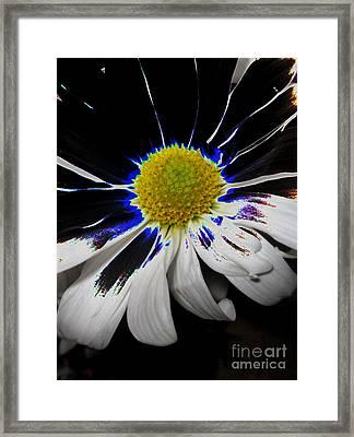 Art. White-black-yellow Flower 2c10  Framed Print