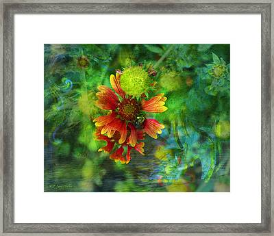 Flower Abstract Framed Print by J Larry Walker