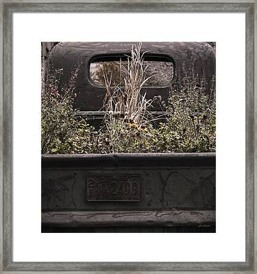 Flower Bed - Nature And Machine Framed Print