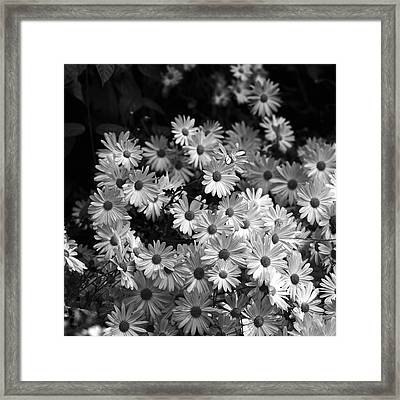 Flower Bouquet Framed Print by Silke Brubaker
