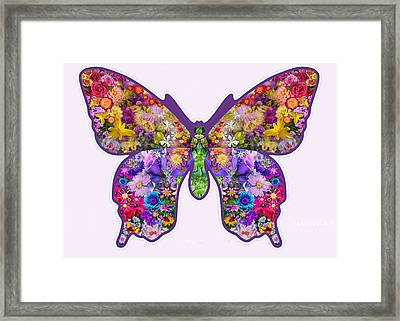 Flower Butterfly Framed Print by Alixandra Mullins