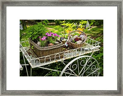 Flower Cart In Garden Framed Print