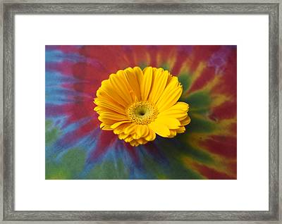 Flower Child Framed Print by Christi Kraft