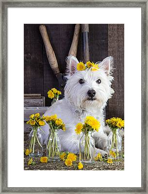 Flower Child Framed Print by Edward Fielding