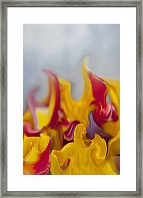 Flower Flames Framed Print by Svetlana Sewell