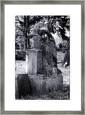 Flower For The Dead Framed Print by John Rizzuto