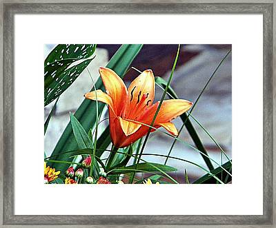 Framed Print featuring the photograph Flower Friend by Joetta Beauford