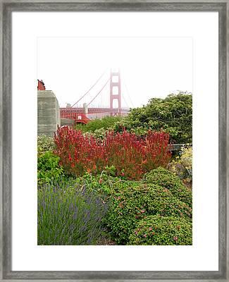 Flower Garden At The Golden Gate Bridge Framed Print by Connie Fox