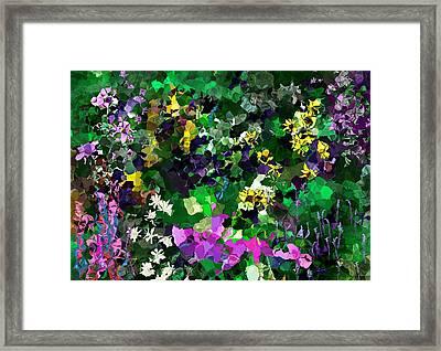 Flower Garden Framed Print by David Lane