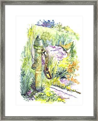Flower Garden Hand Pump Framed Print