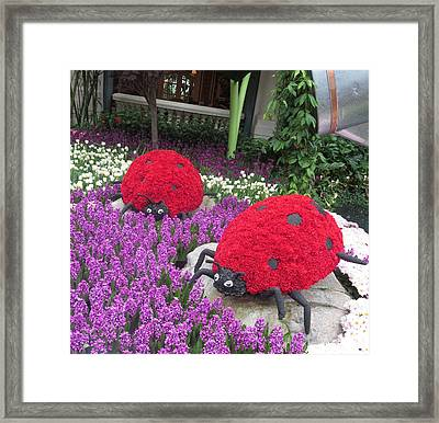 Flower Garden Ladybug Purple White I Framed Print