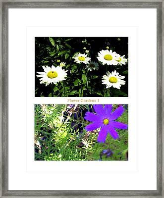 Flower Gardens A Framed Print