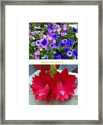 Flower Gardens B Framed Print