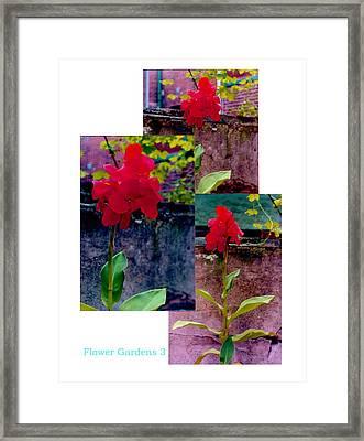 Flower Gardens C Framed Print