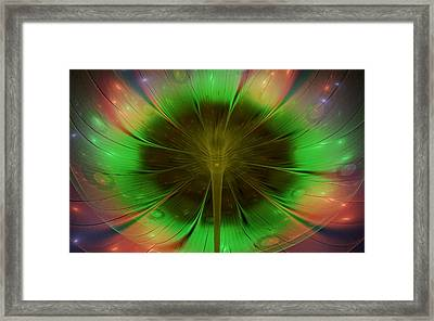 Flower Gazing Framed Print by Rhonda Barrett