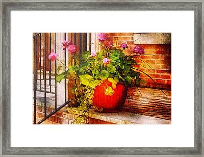 Flower - Geraniums - One Fine Sunny Day Framed Print by Mike Savad