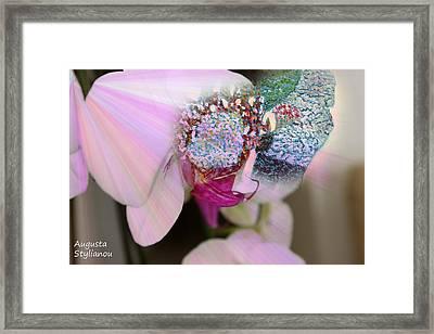 Flower Girl In Orchid Framed Print by Augusta Stylianou