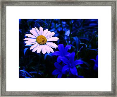 Flower Heals Framed Print