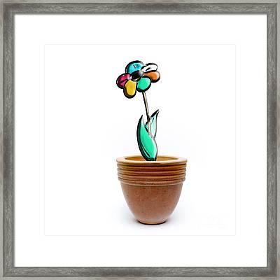 Flower In A Pot. Concept Framed Print