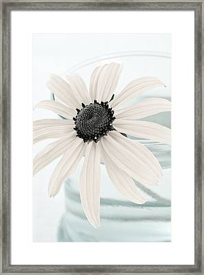 Flower In A Vase Still Life Framed Print
