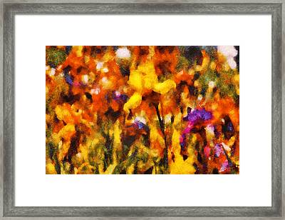 Flower - Iris - Orchestra Framed Print by Mike Savad