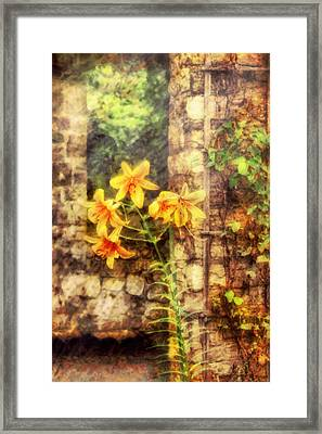 Flower - Lily - Yellow Lily  Framed Print by Mike Savad