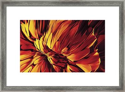 Framed Print featuring the digital art Flower by Matt Lindley
