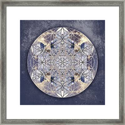 Flower Of Enlightenment Framed Print
