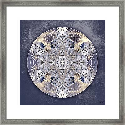 Flower Of Enlightenment Framed Print by Filippo B