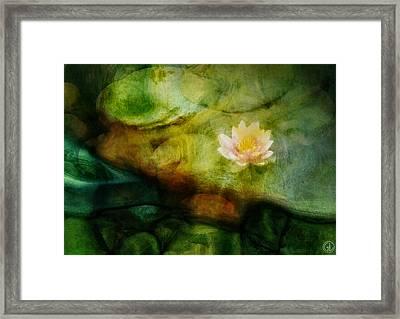 Flower Of Hope Framed Print by Gun Legler