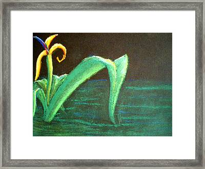 Flower Of The Water Framed Print