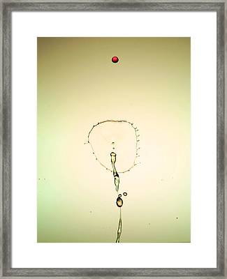 Flower Open In The Air Water Droplets Collision Liquid Art 3 Framed Print by Paul Ge