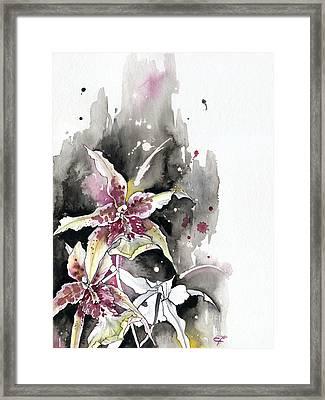 Flower Orchid 12 Elena Yakubovich Framed Print by Elena Yakubovich