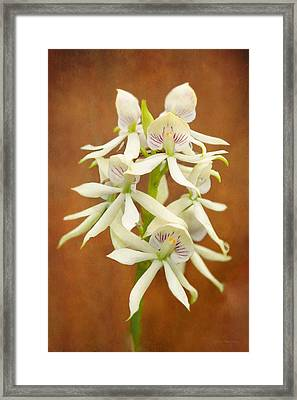 Flower - Orchid - A Gift For You  Framed Print by Mike Savad