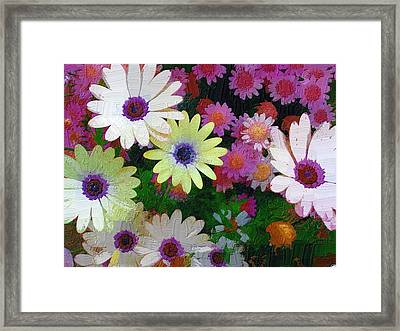 Framed Print featuring the photograph Flower Patch by Diane Miller