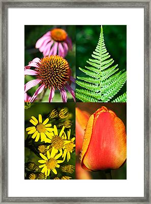 Flower Photo 4 Way Framed Print